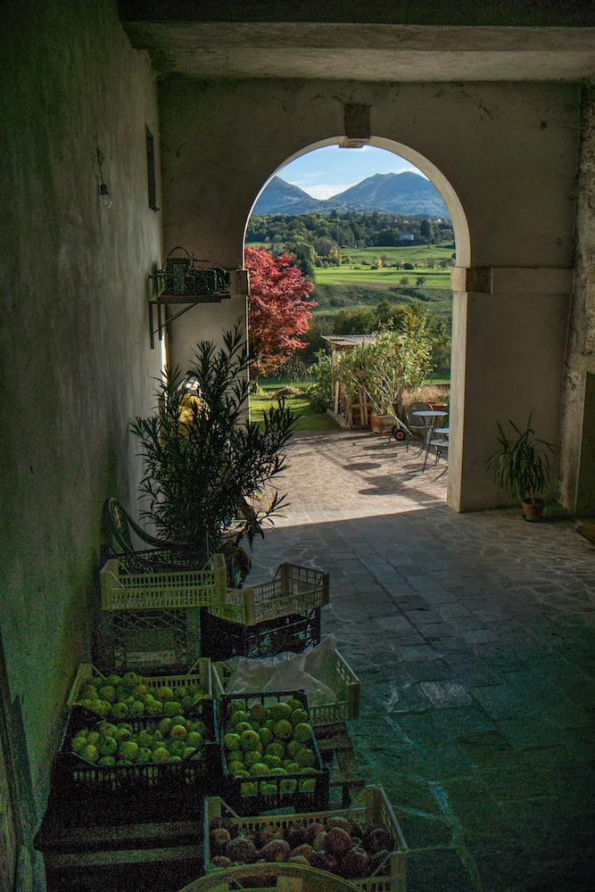 Instagram e la scoperta dell'Italia